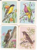 Tea Cards