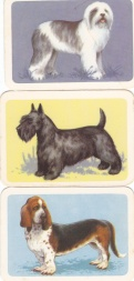 Dog Series Cards