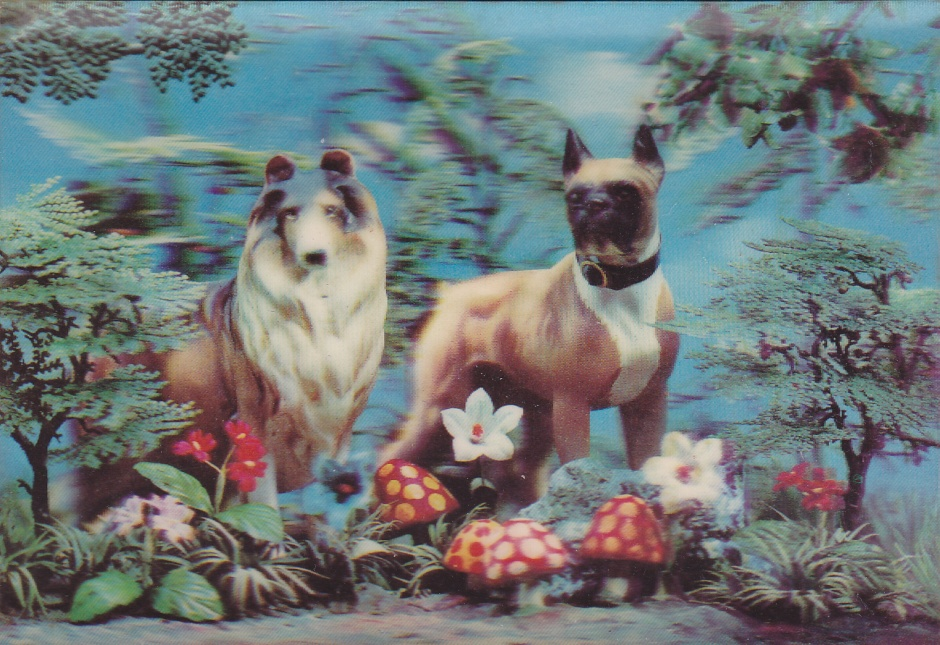 lassie&boxer 3-D postcard, Maryannadair, Is It Art?