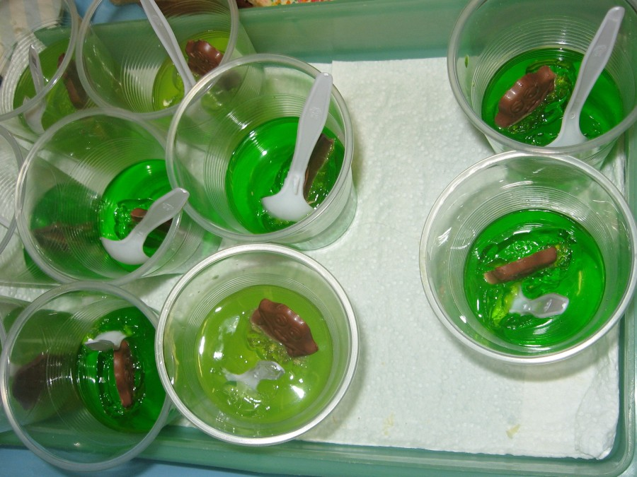 Frogs in the Pond. children's dessert, chocolate frog, lime jelly, Maryann Adair, Is It Art?