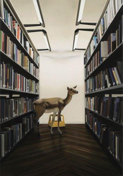 LibraryDeer