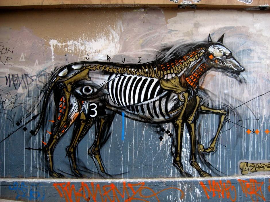 Cezary Stulgis street artist
