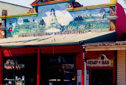Nimbin Shop Front art