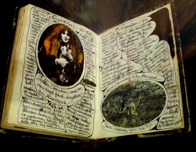 vali myers diaries