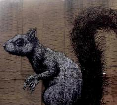 Squirrel by Roa - Brooklyn New York