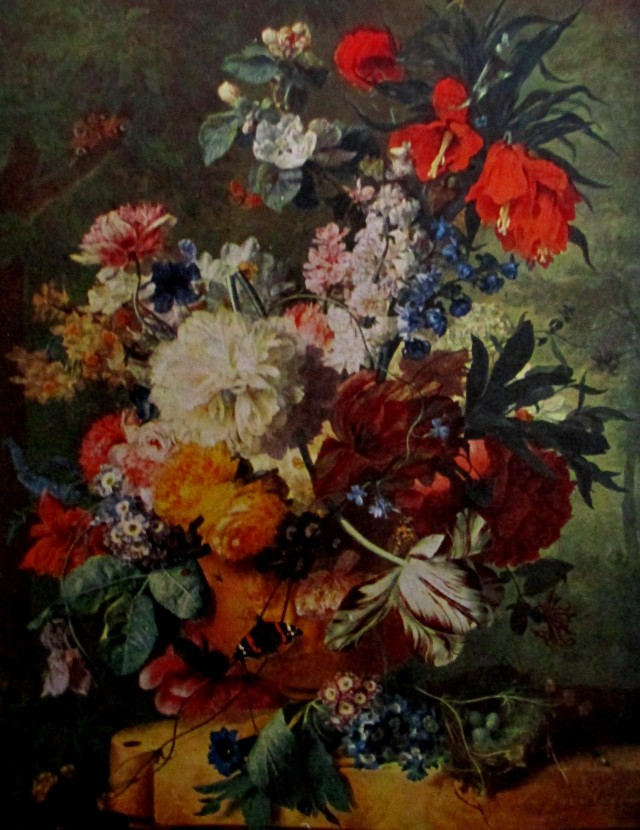 van huysum flowers in a vase
