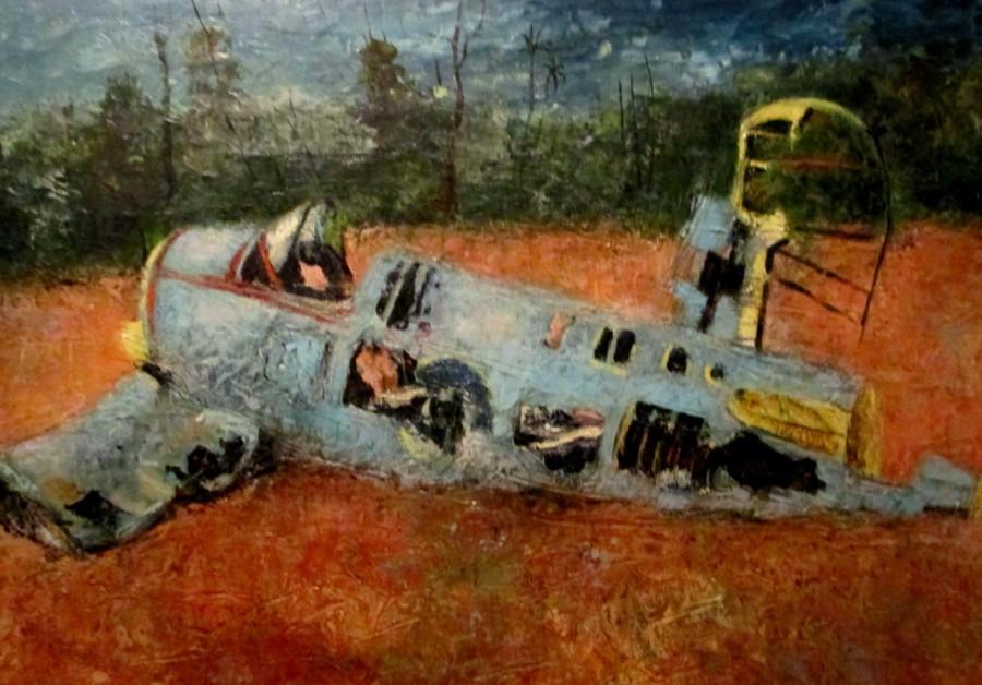 Sali Herman | Crashed Fighter Plane