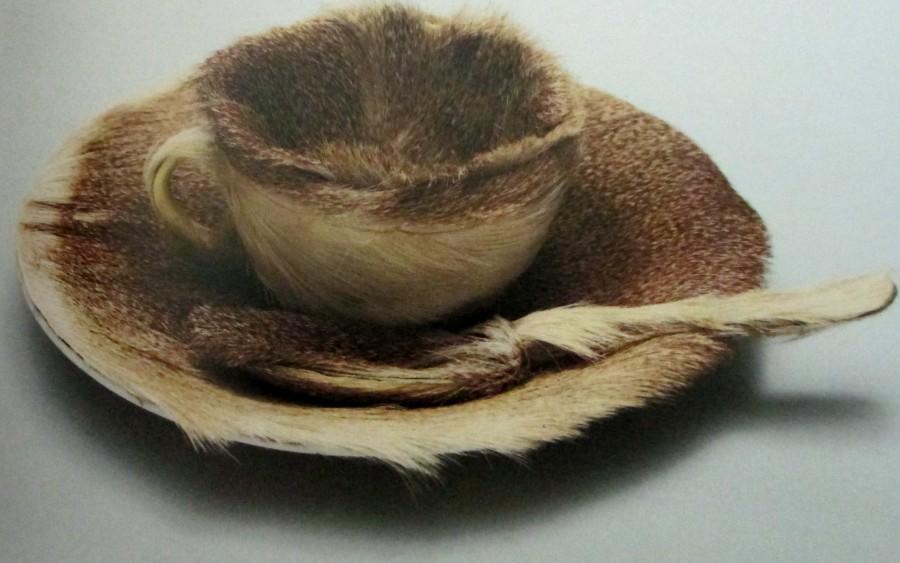 Meret Oppenheim,- The Fur-lined Tea Cup, art, is it art?