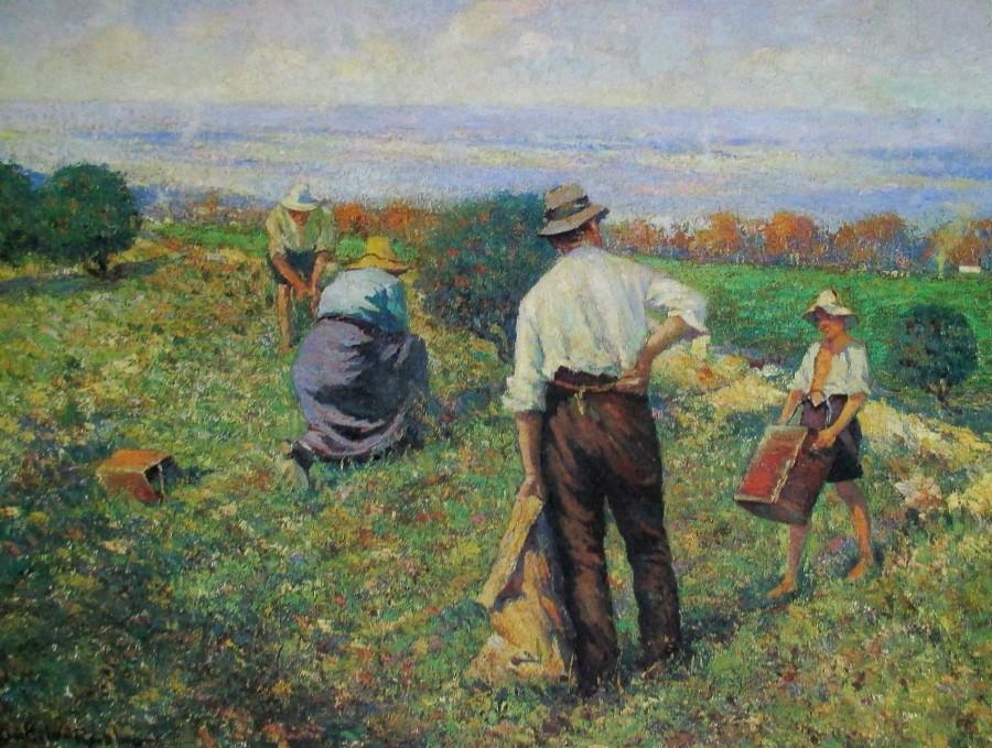 Antonio Dattilo Rubbo - pea gathering, art, painters, Australian artists, is it art?