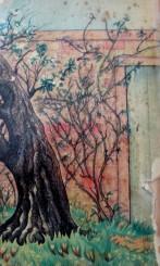 Gloria Freedman - Secret Garden back cover of Penguin paperback, book cover art, back cover, is it art?