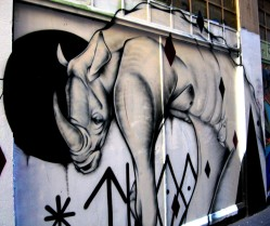 TwoOne rhino, Twoone, street art, street artists, Australian street artists, Melbourne, is it art?