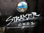 Straker 2011