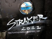 Straker 2011 | cigarette butts