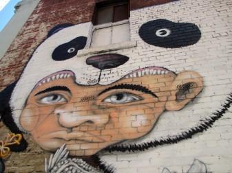 Drewfunk | Panda